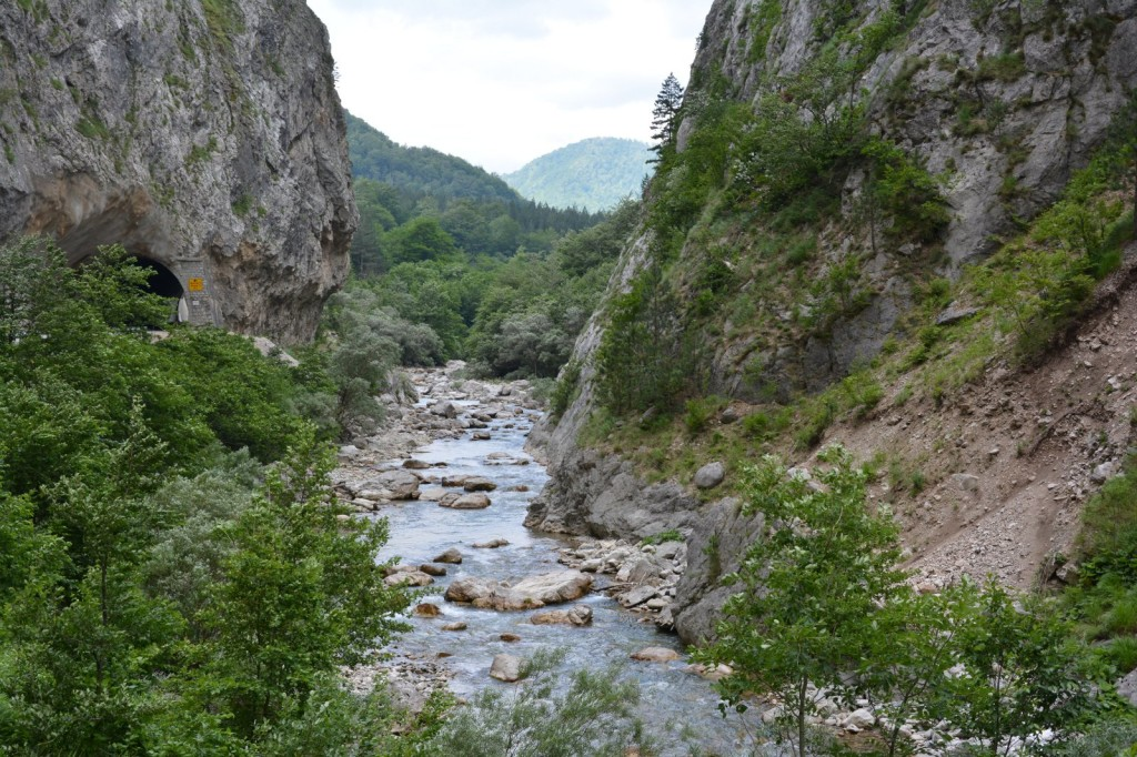 Sutjeska: Scientific research disproves the opinion of the Government of Republic of Srpska